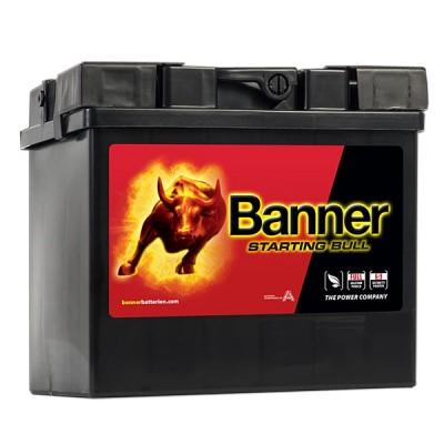 Banner 12V 30Ah 53030