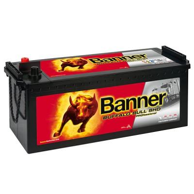 Banner SHD PRO 64503 Buffalo Bull 145Ah