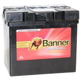 Banner 30Ah 12V Rasentraktorbatterie 53034