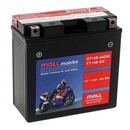 Moll mobike AGM GT14B-4 YT14B-BS Motorradbatterie 12V 11,5Ah